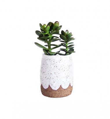 Stand Planter